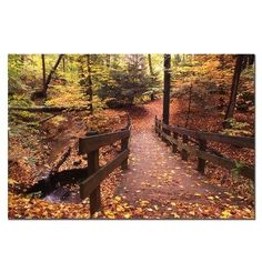 Trademark Fine Art Autumn Bridge by Kurt Shaffer Canvas Wall Art 16x24Inch * Click image for more details. (This is an affiliate link)