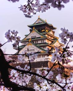 Live in the present moment. Viva o momento presente. Aesthetic Japan, Nature Aesthetic, Japanese Aesthetic, Beautiful Places In Japan, Beautiful World, The Places Youll Go, Cool Places To Visit, Japanese Castle, Fantasy Landscape