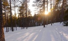 #Finland #Snow When does this winter end?