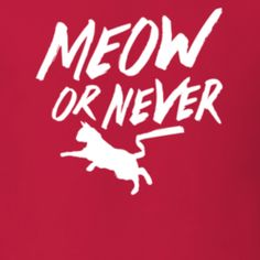 Meow Or Never Play Of Words Funny Cat T Shirt