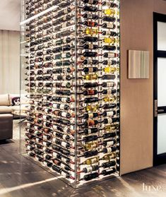Contemporary Glassed-In Wine Storage