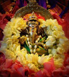 Ganesha Pictures, Ganesh Images, Lord Krishna Images, Sri Ganesh, Ganesh Lord, Ganesh Bhagwan, Hanuman Pics, Ganpati Bappa Wallpapers, Baby Ganesha