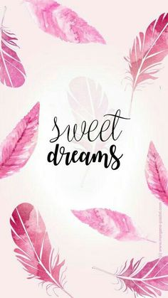 Sweet dreams, aesthetic iphone wallpaper, pink feathers amazingly cute backgrounds to grace your screen
