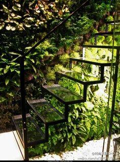 Stairs garden...