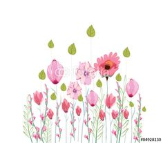 Vector: flowers, drawing watercolor