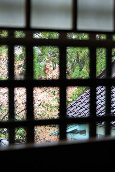 through the window , cherry blossoms , Kyoto Japan , Japanese nostalgic