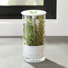 Glass Herb Keeper - Keep herbs fresh and green longer up to two weeks longer with this smart system designed to fit on a refrigerator shelf or door. Unprocessed herbs stand in a plastic water reservoir; silicone leaf topper allows you to lift and cut herbs without removing them from the glass canister. Great for asparagus too.