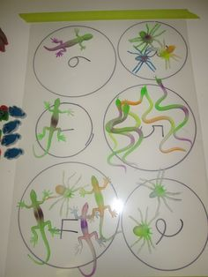 Math exercise- glow-in-the-dark creepy crawlies on the light table