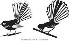 fantail nz - Google Search New Zealand, Nativity, Stained Glass, Silhouette, Bird, Illustration, Image, Patterns, Google Search