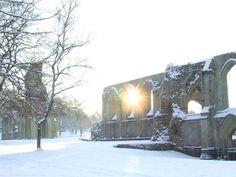 Glastonbury Abbey in the snow