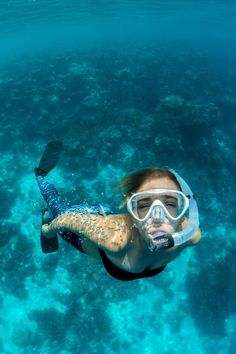 Are you a diver looking for a scuba dive tips? You are at the right place. We prepared for you essential tips for scuba diving gear, travel, equipment, and more. Yoga Fitness, Belize Barrier Reef, Best Snorkeling, Scuba Diving Gear, Belize Travel, Snorkelling, Water Activities, Underwater World, Water Sports