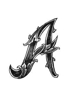 Leaf Script D 1000 images about filigree,scrolls,patterns,acanthus,leaf . Script Cursif, Script Alphabet, Monogram Alphabet, Alphabet Art, Letter Art, Cursive, Graffiti Lettering, Lettering Design, Fancy Letters