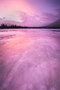 pyrrhic-victoria:  Shrouded in Pink by Danielle Lefrancois