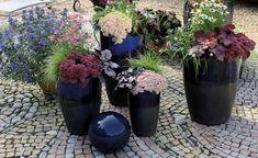 Die 100 Besten Bilder Von Schalen In 2019 Garden Planters Trough