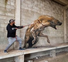 graffiti art Odeith is a street artist from Damaia, Portugal. Odeith makes realistic drawings using graffiti art. His drawings are so realistic. 3d Street Art, Murals Street Art, Amazing Street Art, Street Art Graffiti, Mural Art, Street Artists, Amazing Art, Graffiti Artwork, Graffiti Wallpaper