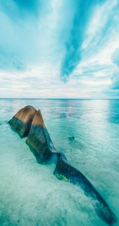 The 8 Best Beaches in the Seychelles! The Seychelles islands are one of the best beach destinations and the top honeymoon destination in the world! With beaches and luxury resorts like these it would be impossible to not have the vacation of the lifetime. | Avenlylanetravel.com #seychelles #beaches #beach #honeymoon #vacation #avenlylanetravel