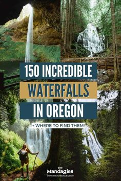 There are so many waterfalls in Oregon to explore, there's one to see no matter where you travel in the state! We're sharing the most famous Oregon waterfalls here, with tips, maps, and downloadable bucket lists to print too! #oregon #PNW #oregonstate #PacificNorthwest #portland #waterfalls Forest Waterfall, Waterfall Hikes, Highway Road, Pacific Coast Highway, Oregon Road Trip, Oregon Travel, California Coast, Oregon Coast