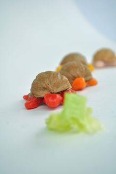 beeswax walnut shell turtles