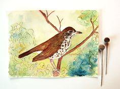 Wood Thrush watercolor 8x10 bird painting fine art woodland nature tree branches original ooak contemporary rustic home decor, $65.00 by KneeDeepOriginals