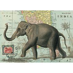 Cavallini Elephant Wrapping Paper - 20