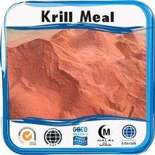 Feed grade Antarctic krill oil for poultry feed Krill Oil, Poultry, Protein, Powder, Natural, Backyard Chickens, Face Powder, Nature, Au Natural