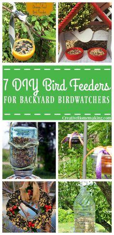Seven easy bird feeders amateur birdwatchers can make for their backyard today.