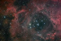 Dust and Light in the Rosette Nebula   (Credit/Copyright: Nicolas Outters)