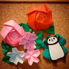 【dorakayo】さんのInstagramをピンしています。 《#おりがみ#折り紙 #origami#paperholding #flower#flowers #rose #cherryblossom #バラ#桜#handmade by my daughter》