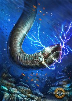 by Kwasi Agyenim Boateng Yesterday, as I watched the National Geographic Channel, I came to learn of the fish called The Electric Eel. Electric Eel, Electric Shock, National Geographic Channel, Underworld, Movie Characters, Predator, Ecology, Under The Sea, Beautiful Creatures