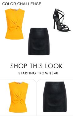 """""""Untitled #8"""" by urttuiuigti ❤ liked on Polyvore featuring Narciso Rodriguez, McQ by Alexander McQueen, orangeandblack and colorchallenge"""