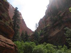 Park Family Insurance > Blog, Taylor Creek Trail, Kolob Canyon... Zion National Park