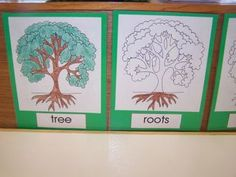 Tree Parts Booklet (instead of one worksheet?) -- Make and use