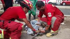 Hero rescuers found a dog fighting to stay alive. The dog's front paws were injured after the pet struggled to scale out of the pond.