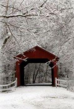 "See 24 photos and 1 tip from 149 visitors to Sandy Creek Covered Bridge State Historic Site. ""One of the last four covered bridges in the state. Hirsch Illustration, Old Bridges, Winter Scenery, Winter Colors, Winter Magic, Snow Scenes, Winter Pictures, Old Barns, Covered Bridges"