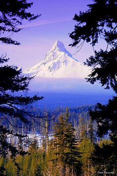 Mt. Washington, Oregon.