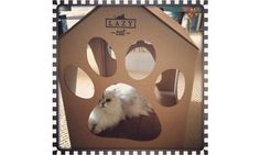Lazy Cat, Pet Furniture, Lounge, Pets, Animals, Products, Airport Lounge, Lounge Music, Animaux