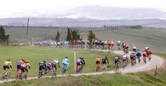 Suggestions that riders are rigging their bikes have escalated, and a report by a French TV network suggested that motordoping had arrived at the sport's top levels.