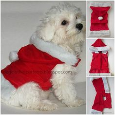 <p>Source: http://dogclothespatterns.blogspot.com/2011/12/santa-claus-dog-outfit-patterns.html >>> Free Crafts Projects</p>