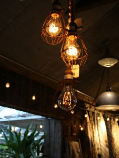 Edison Bulbs and Wire Cages. Great vintage appeal to any interior!