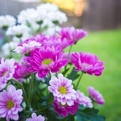 Pretty flowers to start the day off hope everyone has a good Thursday and is looking forward to the weekend.