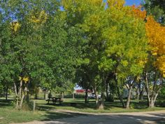 Camping information for Nanton Campground with map & directions, includes photo gallery of campground, near Nanton in Alberta Dolores Park, Photo Galleries, Camping, Gallery, Travel, Campsite, Viajes, Roof Rack, Destinations