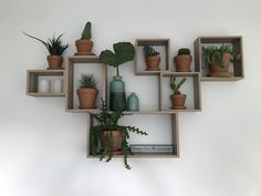 Wall Bookshelves, Diy Wall Shelves, Diy Furniture Hacks, Furniture Decor, Wooden Crates On Wall, Living Room Designs, Living Room Decor, Indoor Plant Shelves, Greenery Decor
