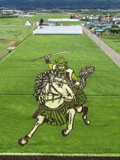 Farming Art: Rice Patties In Japan Turned Into Giant Pictures By Planting Different Colored Rice
