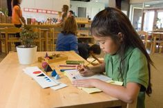 Common Core Standards: An Opportunity for Montessori to Shine