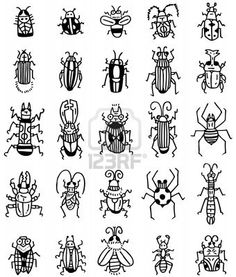 hand draw insect  icon Stock Photo