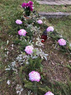 Anton, Cemetery, Maps, Google, Outdoor Decor, Plants, Blue Prints, Plant, Map
