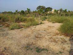 near guadarmar, spain