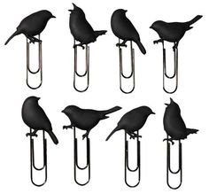 Eight pack of blackbirds :: original seller/ creator is realshopping.com.au