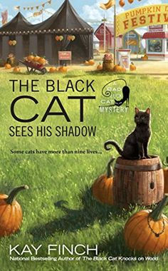 The Black Cat Sees His Shadow (A Bad Luck Cat Mystery) by... https://www.amazon.com/dp/B01MAUPJOD/ref=cm_sw_r_pi_dp_x_OAiqybX4Y5V38
