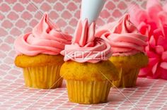 decorating cupcakes with an icing tube. - Close-up image of a person decorating cupcakes with an icing tube.